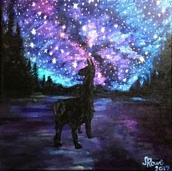 Īśvarapraṇidhāna – The Llama of Supreme Consciousness   2017   NFS